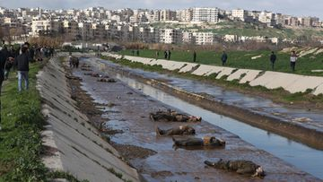 Locals gather at the banks of a small canal coming from a government-controlled suburb of Aleppo, Syria, to view dozens of bodies of people 29 January 2013. According to unconfirmed reports of eyewitnesses, most bodies had their hands tied behind their backs and had been shot in the head. Eyewitnesses, police and local residents are reported to have claimed the dead had been killed by supporters of Syrian government. EPA