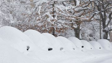 Snow covered vehicles sit on Commonwealth Avenue on February 9, 2013 in the Brighton neighborhood of Boston, Massachusetts. The powerful storm has knocked out power to 650,000 and dumped more than two feet of snow in parts of New England. (Photo by Jared Wickerham/Getty Images)