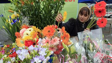 A flower vendor prepares bouquets for customers at an outdoor market on International Women's Day in Bucharest March 8, 2012. Men acknowledge the women they love on International Women's Day by presenting them with small souvenirs and flowers. LEHTIKUVA / REUTERS/Radu Sigheti (ROMANIA - Tags: ANNIVERSARY SOCIETY)