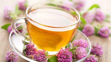 Apilankukista voi valmistaa raikasta teetä.