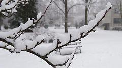 Talvista säätä myös ensi viikolla: Lunta, pakkasta ja tuulta