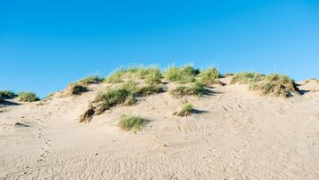 Yyteri_beach_Finland_04_5764