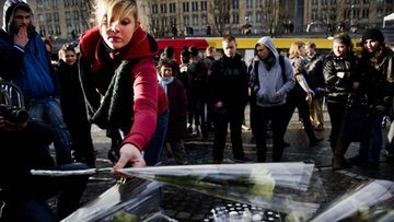 A woman places a white rose at the site of the tragedy in Place Saint-Lambert, Liege, Belgium, 14 December 2011. Three people were killed at the bus stop during the shooting and grenade attack in downtown Liege on 13 December, more than hundred people were injured. The gunman shot himself shortly after. A fourth victim was later found in a shed belonging to him.