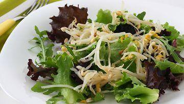 Pavun idut sopivat erinomaisesti sellaisenaan salaatin täytteeksi.