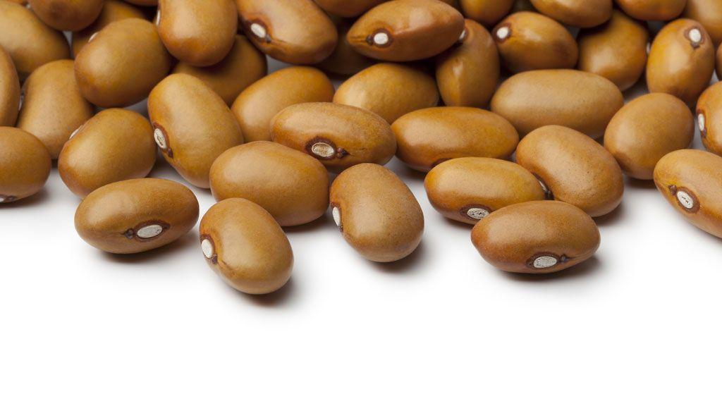 Proteiinipitoisia Ruokia