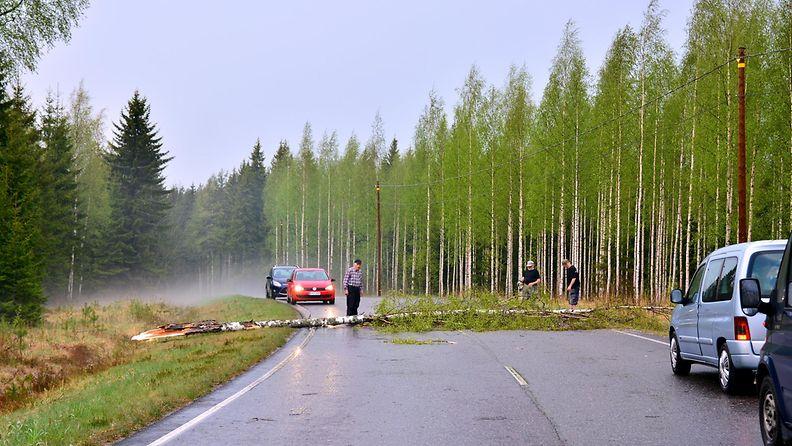 Kaatunut koivu tukki liikenteen hetkeksi Liesjärvelle menevällä tiellä.
