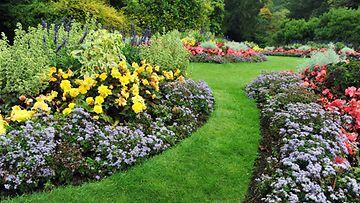 puutarha_kastelu