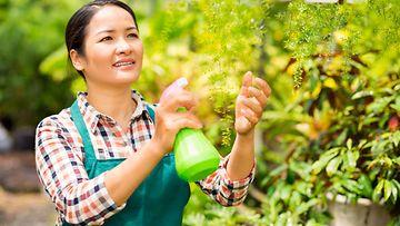 puutarhanhoito