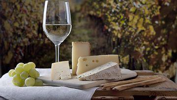 valkoviini ja juustot