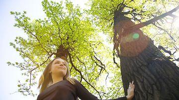 Nainen koskettaa puuta metsässä