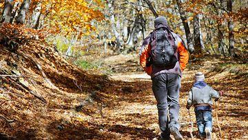 Isä ja poika kävelyllä metsässä