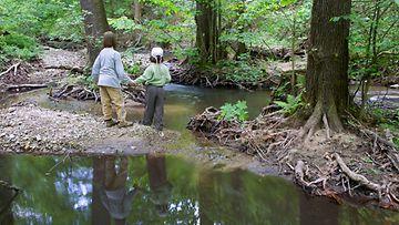 Lapset leikkivät metsässä