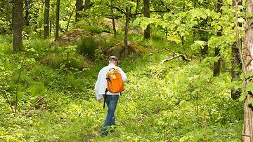Mies kävelee luonnossa