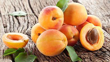 aprikoosi,-hedelmä