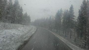 Kittilässä oli maa paikoin valkeana 16. kesäkuuta 2014.