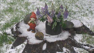 Talvi tuli kesän keskelle, Kangasala 17. kesäkuuta 2014. Lukijan kuva: Aimo Salo
