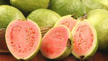 guava,-terveyspommi