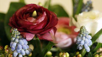 Keväinen kukkakimppu (Lehtikuva)