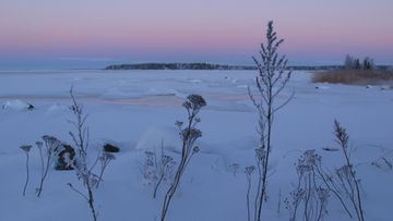 Värikäs taivas Mustasaaressa Vaasan seudulla. Lukijan kuva: Matti Hietala