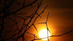 Auringon j�ttil�ispilkku aiheuttanut h�iri�it� radioliikenteess�
