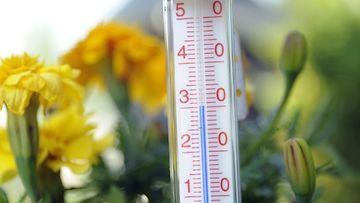Lämpömittari näyttää noin kolmeakymmentä astetta espoolaisella pihalla 13. heinäkuuta 2010.