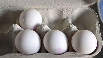 Kananmunia. (Lehtikuva)