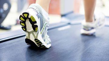 fitness kengät