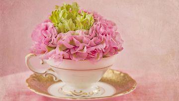 teekuppi, kukat
