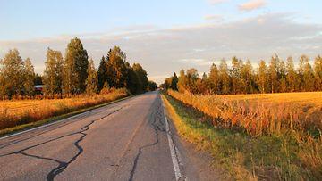 Syksyisiä värejä 2. syyskuuta 2014. Lukijan kuva: Sinikka Kujala