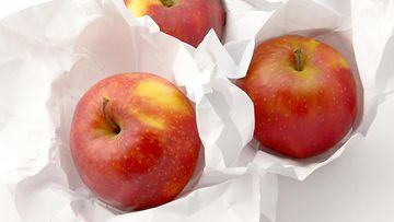 säilötyt omenat