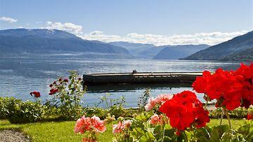 sogenfjord2