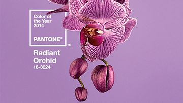 Radiant Orchid -trendiväri 2014