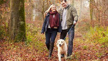 Nainen-mies-ja-koira-metsässä