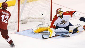 Korpikoskelta namupassi – ex-Pelicans-t�hti osui NHL-debyytiss�