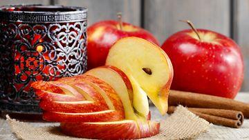 omenajoutsen