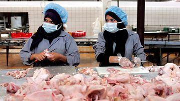 lintuinfluenssa
