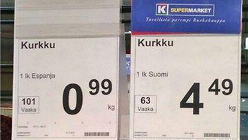 kurkun-hinta