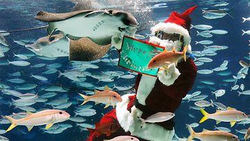 Tokiolainen joulupukki toivottaa hyvää joulua rauskujen seasta Japanissa 22.12.2014.