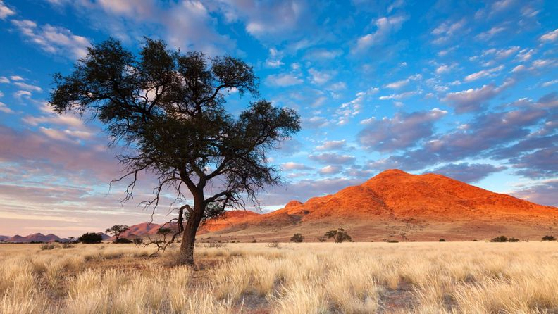 Namibialainen maisema (1)