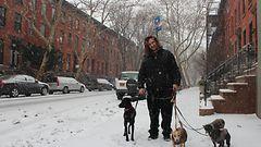 New Yorkin lumiseen aamuun uskaltautuivat lumenkolaajat ja koiranulkoiluttajat