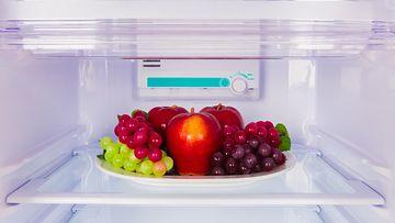 jääkaappi (1)
