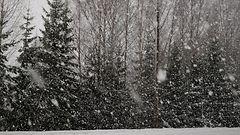Lumipyry haittaa liikennettä viikonloppuna, etelään myös vesisateita