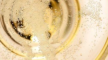 champagnebubbles