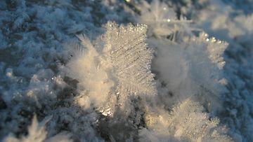 Tammikuisen pakkaspäivän taidetta metsälammen pinnalla. Lukijan kuva: Marjatta Lassi.