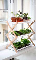 Plant_Shelf_0039