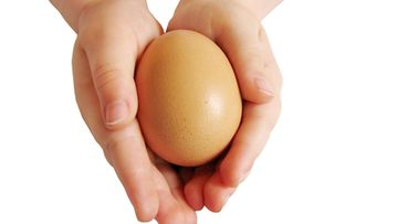 kananmuna, kädet