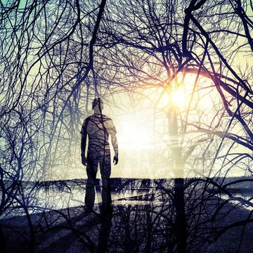 Mies metsässä, tuplavalotus