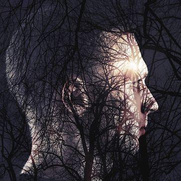 Mies metsässä, tuplavalotus 2