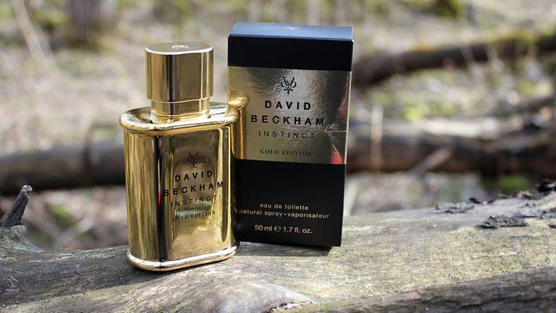 david hajuvesi