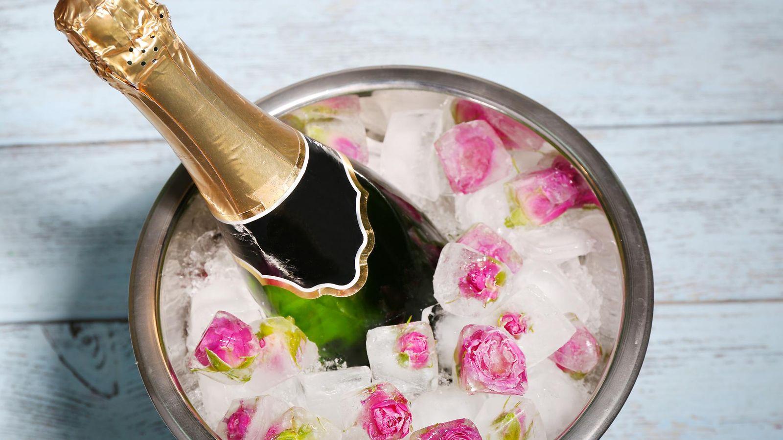 Суёт бутылку от шампанского, Села на бутылку -видео. Смотреть Села на бутылку 17 фотография